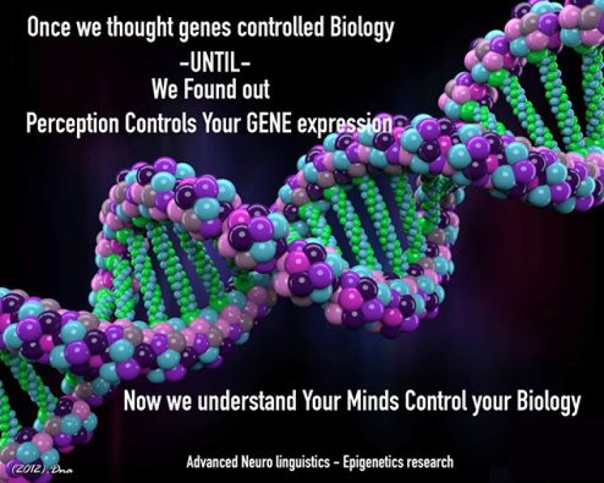 Your Mind Is Controlling Your Biology | Brisbane Hypnotherapy