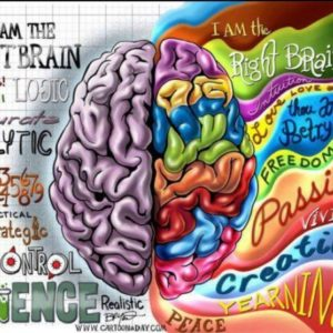 The Whole Brain State To Create Change | Mindset Hypnotherapy
